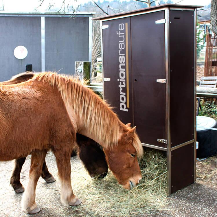 Pferdeautomat Portionsraufe auf der Weide